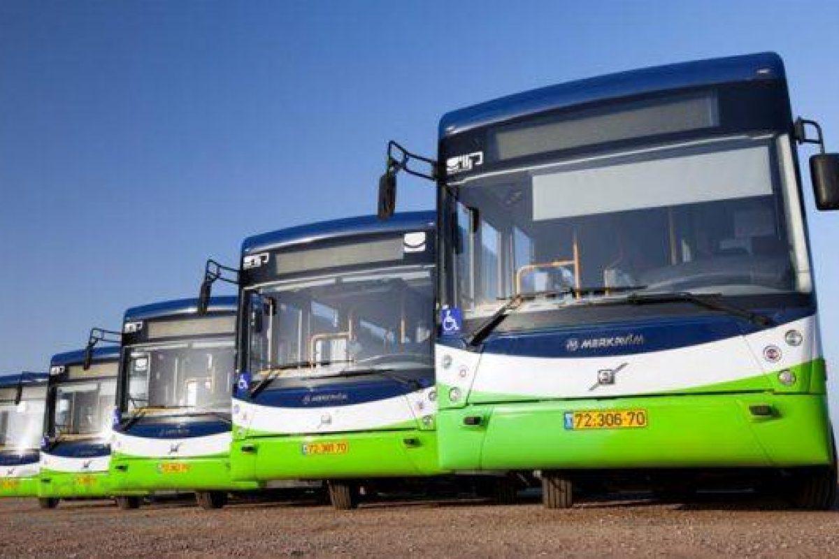 אילוסטרציה אוטובוסים חברת קווים | צילום יח